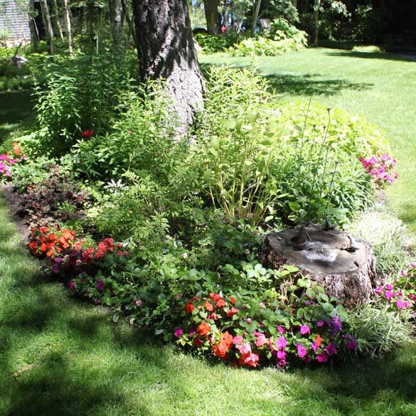 20 best images about tahoe landscape on pinterest you for Landscape design flower beds