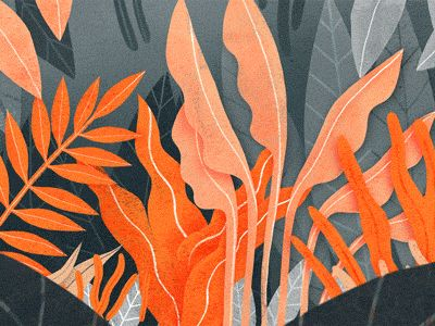 The Furrow Collaboration (Plant Life) by han.del eugene #Design Popular #Dribbble #shots