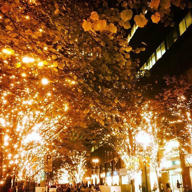 Instagram【hisashi_kato】さんの写真をピンしています。 《Illumination night in Marunouchi, Tokyo #illumination #streetlights #champelysees #boulevard #Marunouchi #gaslight #townlights #orenge #yellowleaves #redleaves #parking #traficsign #neonlights #windowshopping #nightwalk #chilly #supermoon #イルミネーション #イルミ #丸ノ内 #丸ノ内仲通り #紅葉 #銀杏 #銀杏並木 #夜景 #写真好きさんと繋がりたい #ガス灯 #ライトアップ #街灯》