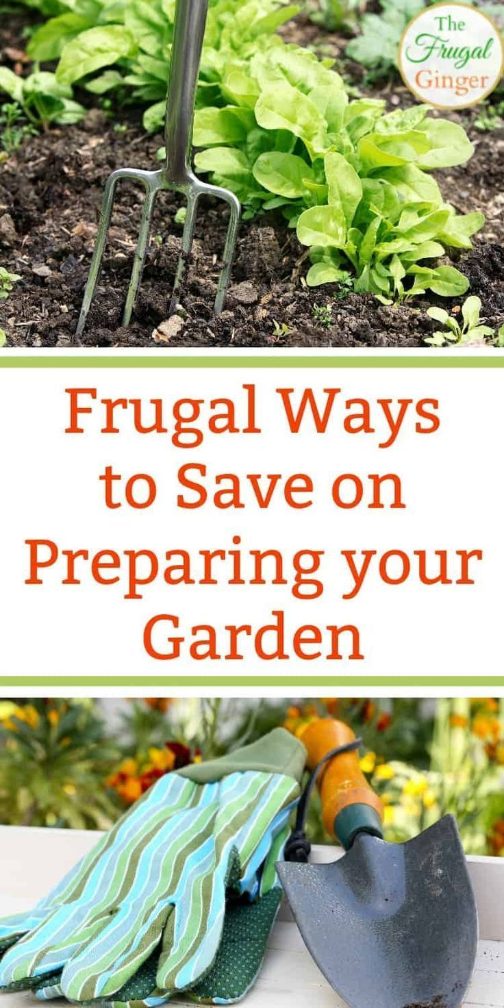 Start A Garden On A Budget Frugal Ideas To Try Now Starting A