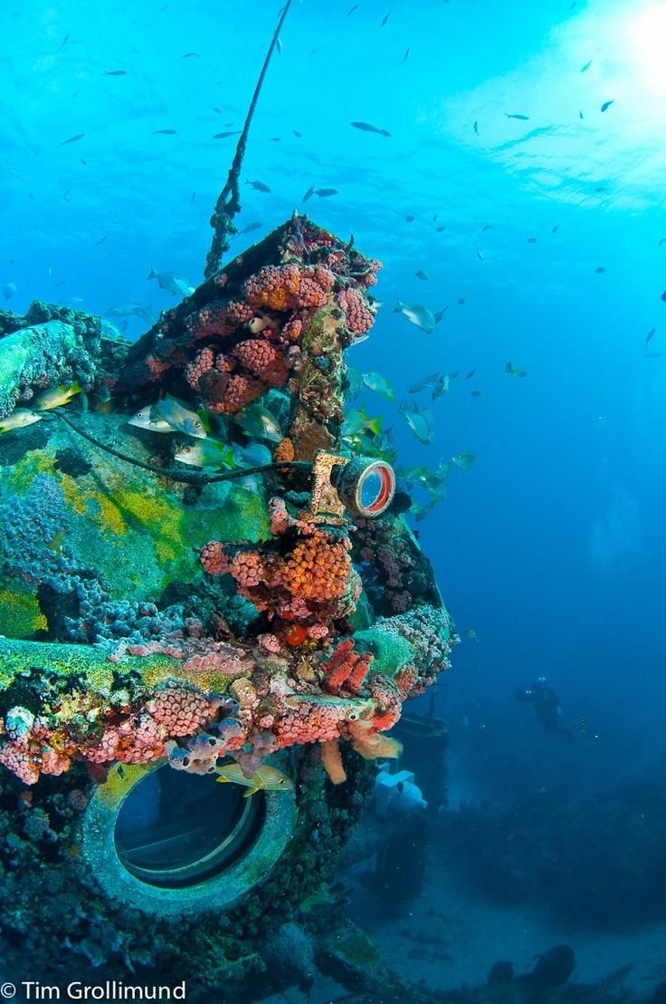 Best Images About Mission Aquarius Aquanauts On The Ocean - Ocean floor painting