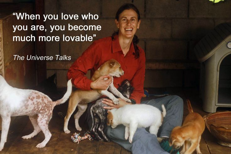 A photo showing just how happy I was in the puppy pen at Care For Dogs shelter in Thailand