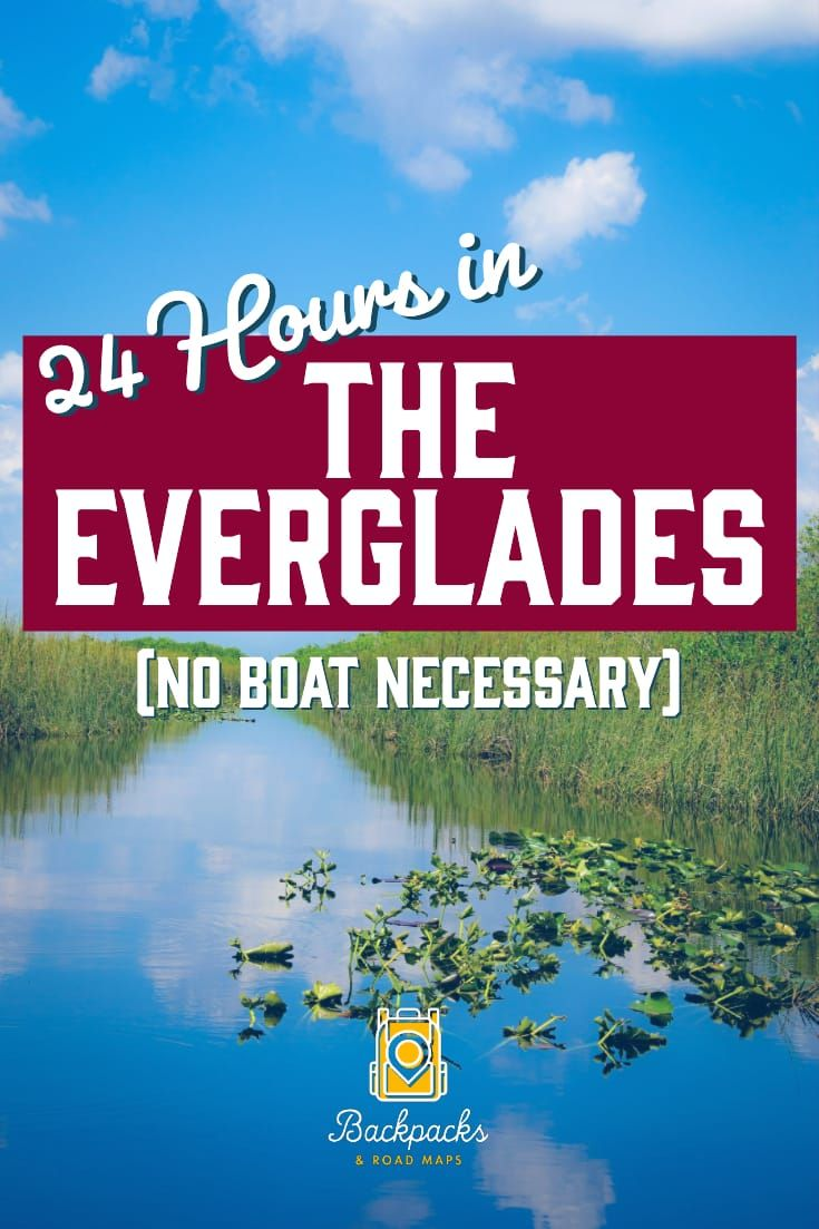 How To See The Everglades In 24 Hours No Boat Necessary Florida Travel Everglades National Park National Parks Trip