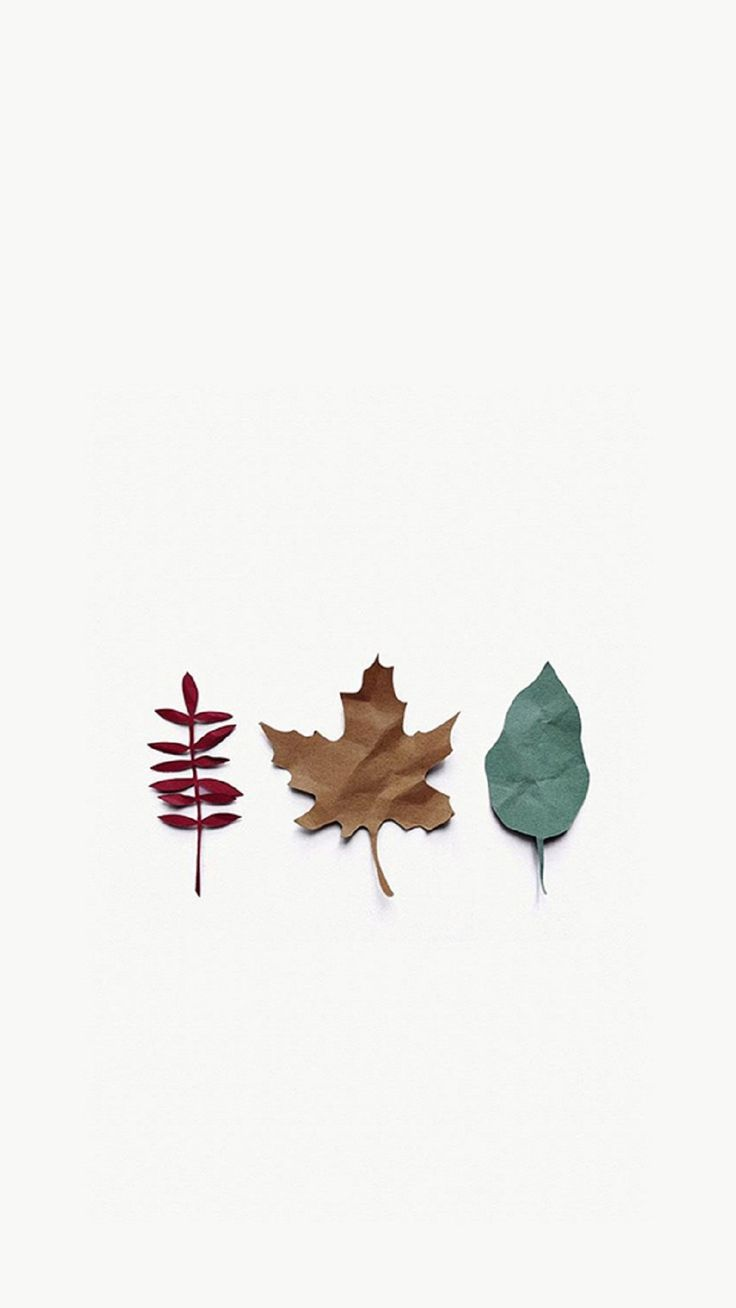 Various Paper Leaves of Autumn. Tap to see the best iPhone wallpapers of the Most Colorful Season of the Year! Nature, fall, paper craft - @mobile9