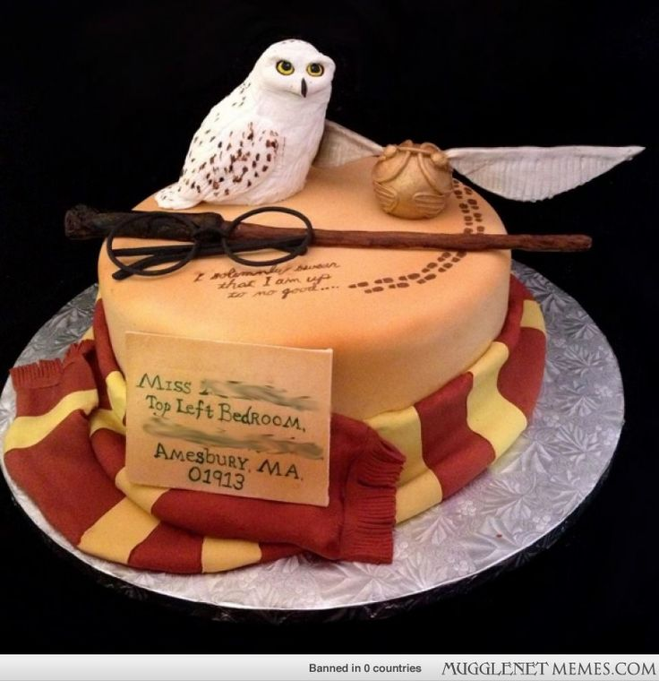 33 best Cakes Owl images on Pinterest Owls Owl cakes and Conch