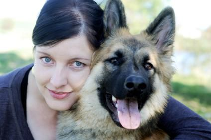 German Shepherd Guard Dog Training