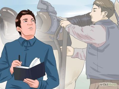 How to Approach Your Horse -- via wikiHow.com