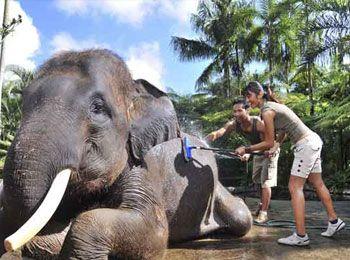 Rejser og Rundrejser til Indonesien samt Bali
