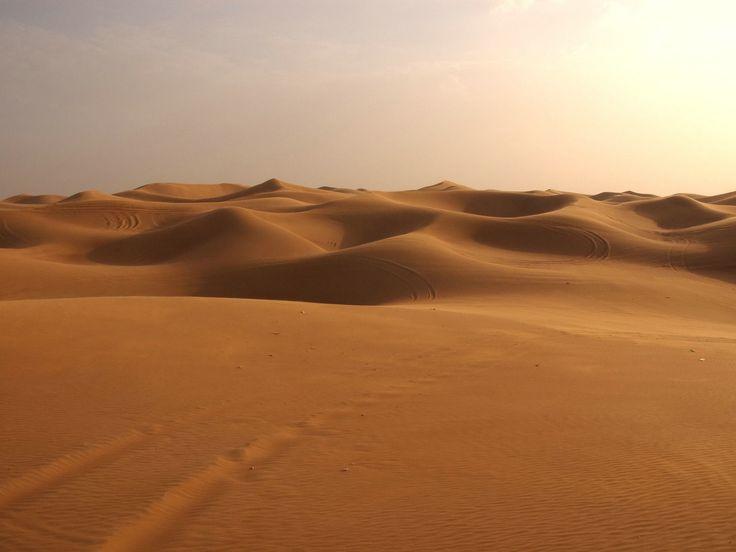 Un desierto es un bioma que recibe pocas precipitaciones