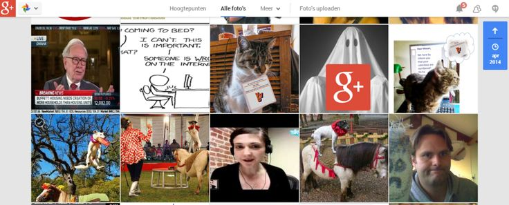 google plus fotos