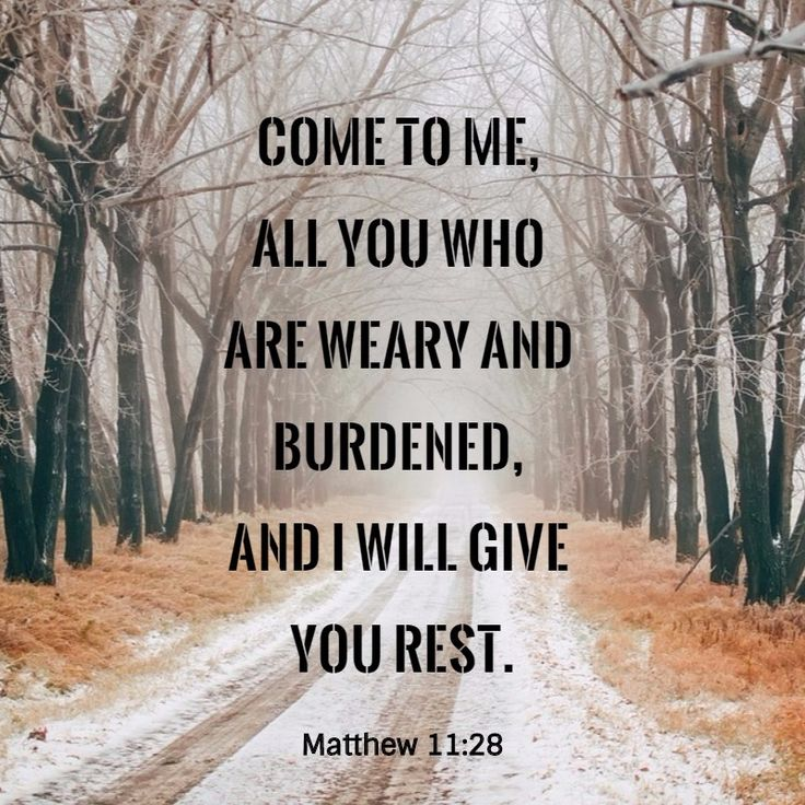 Bible Verse of the day Matthew 11:28. In this world you will have trouble and you cannot face them all by yourself, but thanks be to God that we have a Savior who is willing and able to help us to overcome these troubles. Please share this message with someone. God Bless.