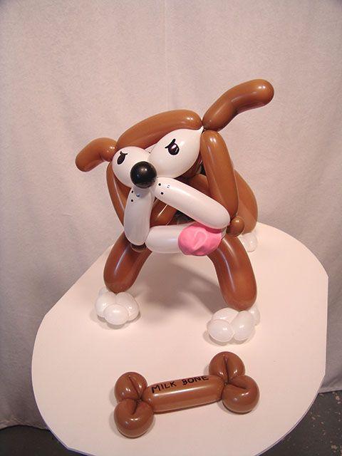 Balloon bulldog birthday gift delivery in Denver