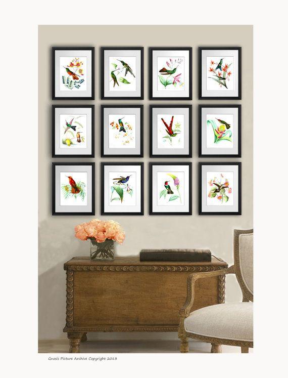 Hummingbirds Vintage Bird Print Set Of 12 Nature Prints Wedding Housewarming Gift Home Decor Wall Art