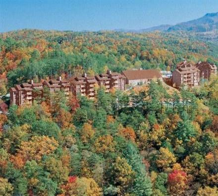 Dog friendly hotel in Gatlinburg, TN - Deer Ridge Mountain Resort   Gatlinburg, TN