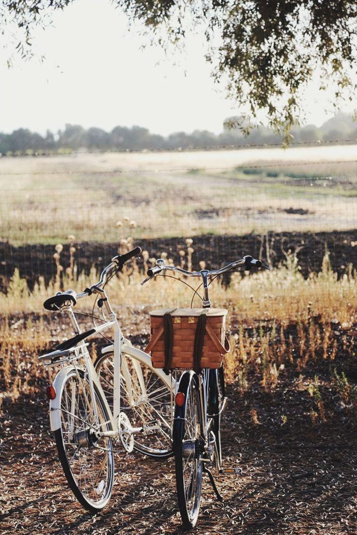 I wish it was warm enough to take a nice bike ride!