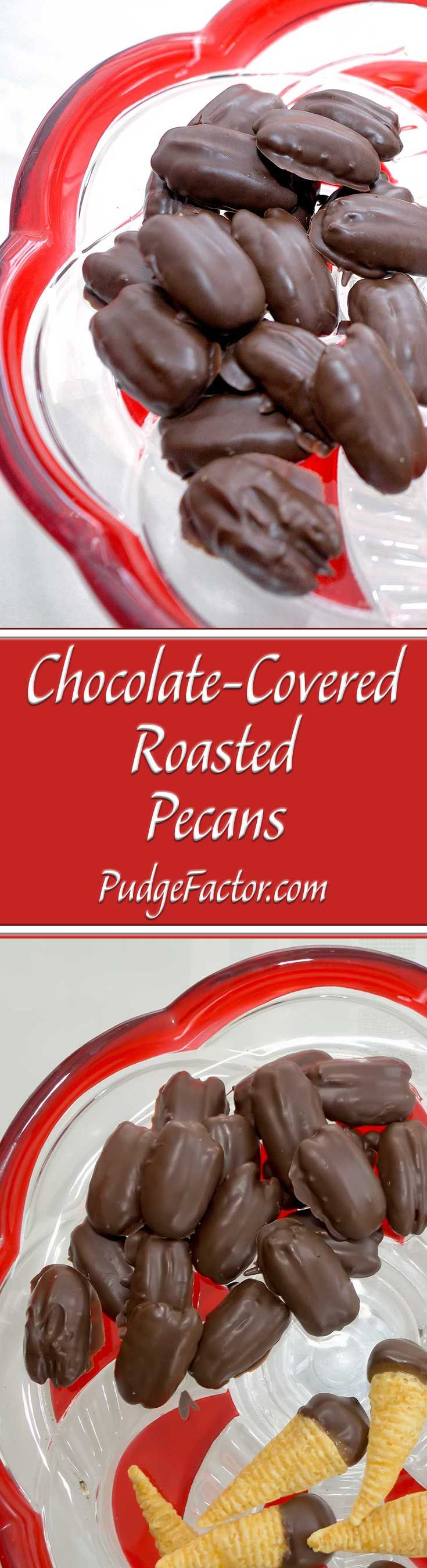 Chocolate Covered Roasted Pecans - Eat them as a snack, or give them as a holiday gift. via @c2king