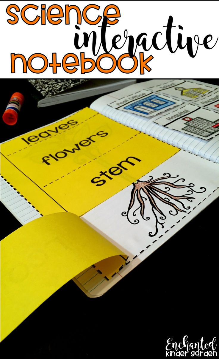 Ready to use interactive notebooks in kindergarten and 1st grade? This science interactive notebook will be useful to integrate reading with social science. It includes living things, plants, animals, community, force and motion and SO much more!