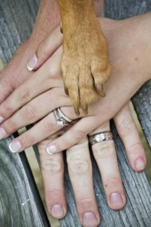 What A Very Creative Idea To Involve The Family Pet In Engagement Or Wedding Photos... by Caiteyb