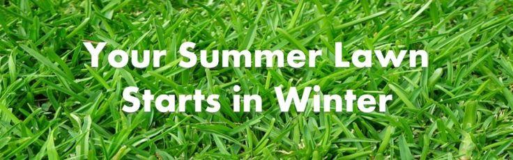 Turf Suppliers Brisbane | Sir Walter Turf | Zoysia | Lawn Grass