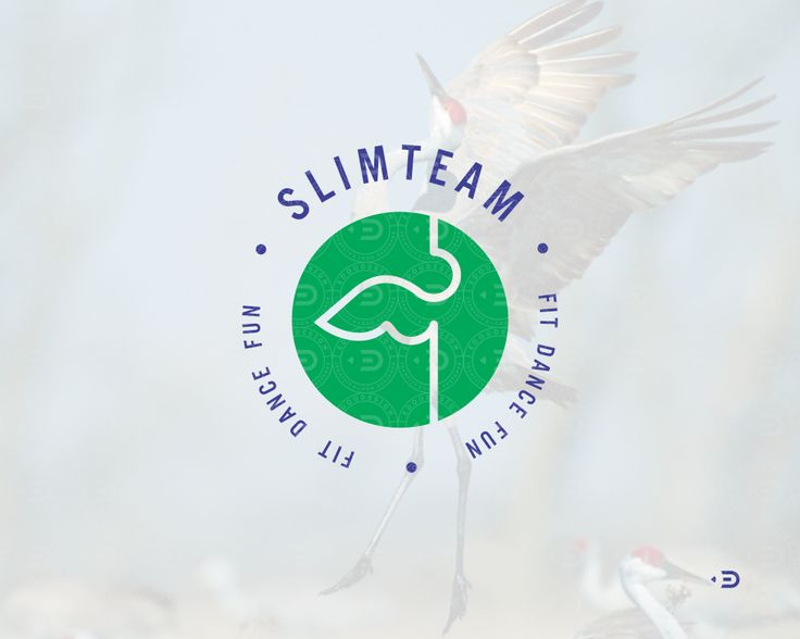 Logo, mark for SlimTeam by ©Edoudesign. SlimTeam. Fit Dance Fun - dance weight loss program  Логотип для SlimTeam от ©Edoudesign - специальная танцевальная программа для похудения.  #похудение #фитнесс #танцы #команда #логотип #знак  #slim #team #dance #fit #fun #weight #crane #edoudesign #logomaker #symbol #mark #logo #logotype #typetopia #typetopialogolove #calligritype #goodtype #designspiration #logoplace #logoinspirations #typografi #typematters #thedesigntip #thedailytype #typography