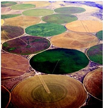 Center-pivot sprinklers are among the irrigation methods used in the High Plains. Large quantities of groundwater pumped from the Ogallala Aquifer allows these semiarid western lands to yield abundant harvests.