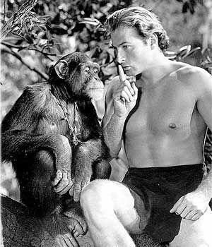 Lex Barker as Tarzan