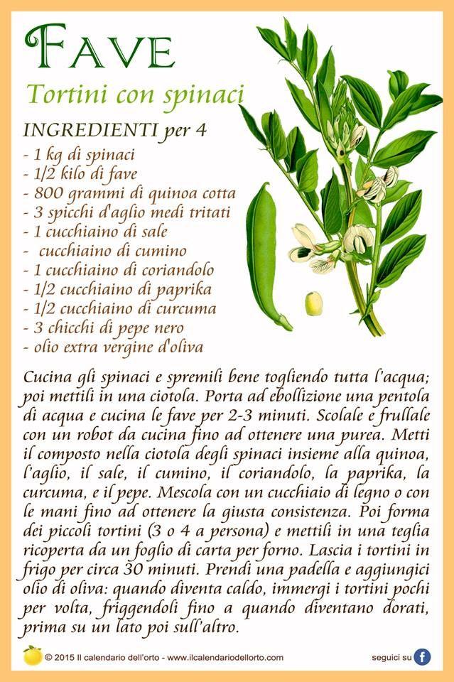 Favve: tortini con spinaci