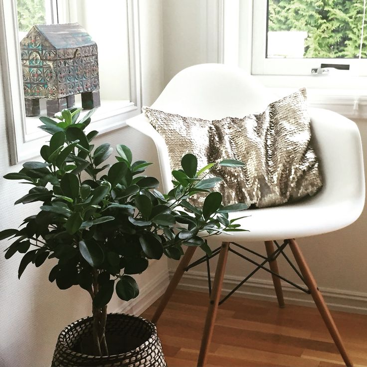 My livingroom. Eames. Sense of joy.