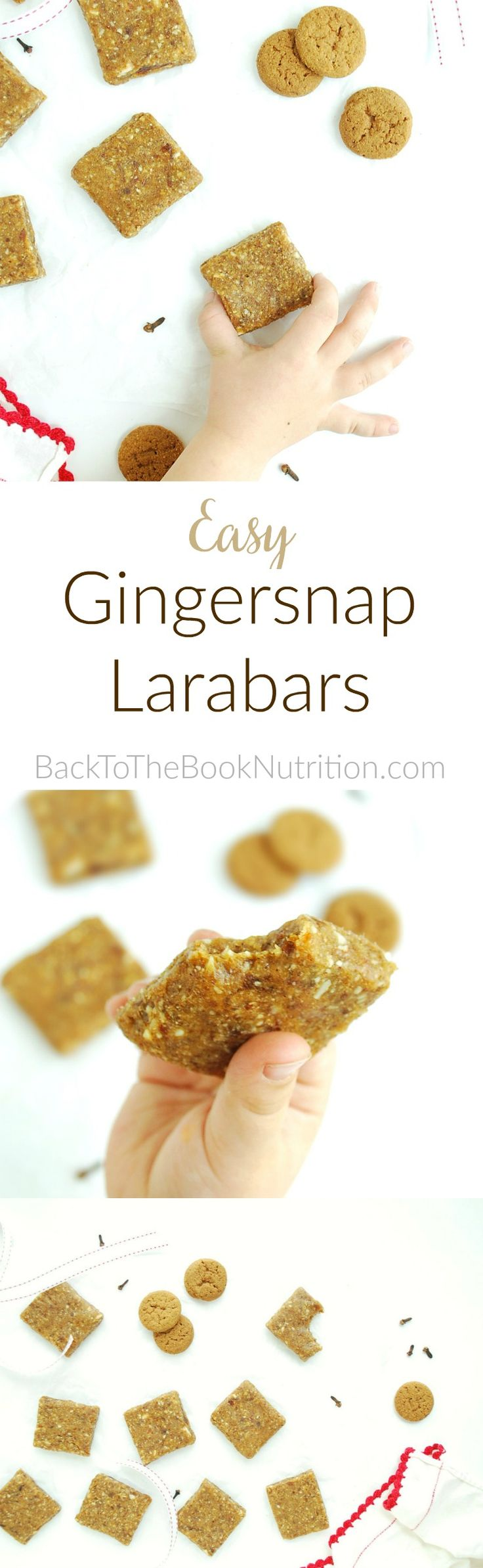 Easy Gingersnap Larabars - super healthy breakfast or snack made from just fruits, nuts, and spices but tastes like cookies! (Gluten free, grain free, dairy free, peanut free) | Back To The Book Nutrition