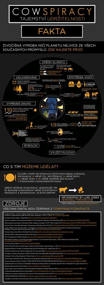 Infografika z filmu Cowspiracy.