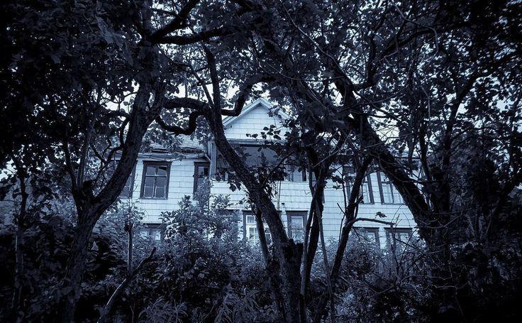 Tenk att eg tort å stopp og ta bilde av dæ huse!!  #grøss #gru #spøkelseshus #creepy #scary #scaryshit #hauntedhouse #haunted #sigerfjord #sortland #vesterålen #oldhouse by jalfheim
