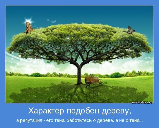 а репутация - его тени. Заботьтесь о дереве, а не о тени...