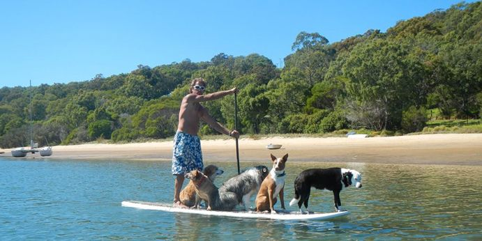 We know our four-legged friends love the beach and going along on pet-friendly holidays, so pooch lovers will bark happily at being able to SUP with their best friends!