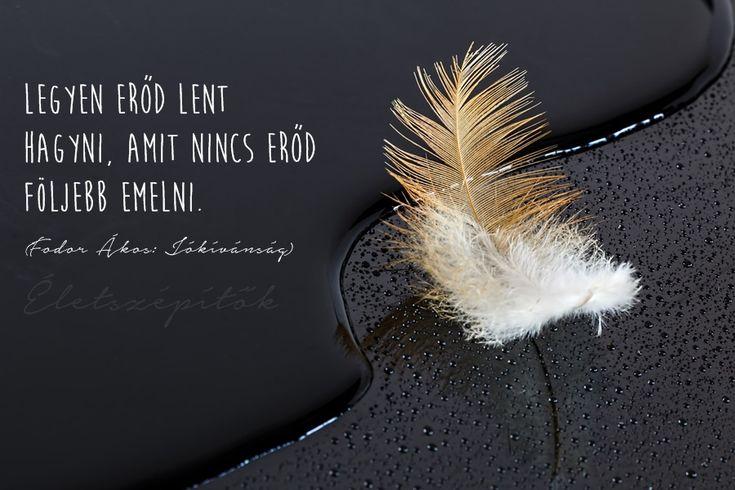 Képes idézetgyűjtemény szómíves érzelmiségieknek Fodor Ákos költő-műfordítótól