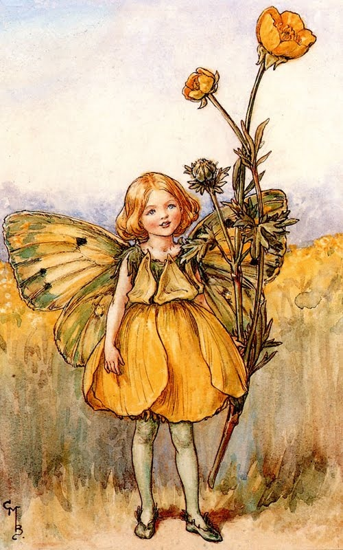 The buttercup fairy - By Cicely Mary Barker