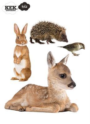 Forest Friends Animals Set 2
