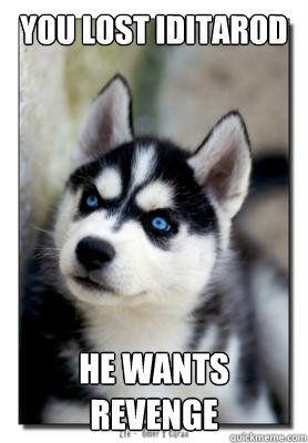 """Angry Husky"" | quickmeme » | Laugh Break | Pinterest"