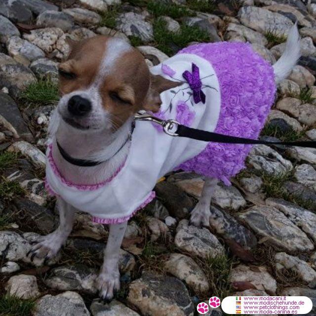 Kleid Kleine Hund mit Rosen-Rock  Lilac #Hunde #Chihuahua - Kleid für kleine Hund (Chihuahua, Malteser, Pudel) mit weißen Chenille Mieder; die Rüscherock (in lilac) ist mit Stoff Rosen dekoriert
