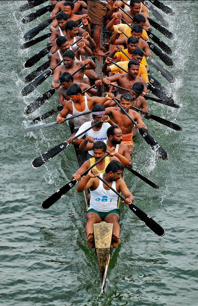 Team effort rowing messing about in boats pinterest