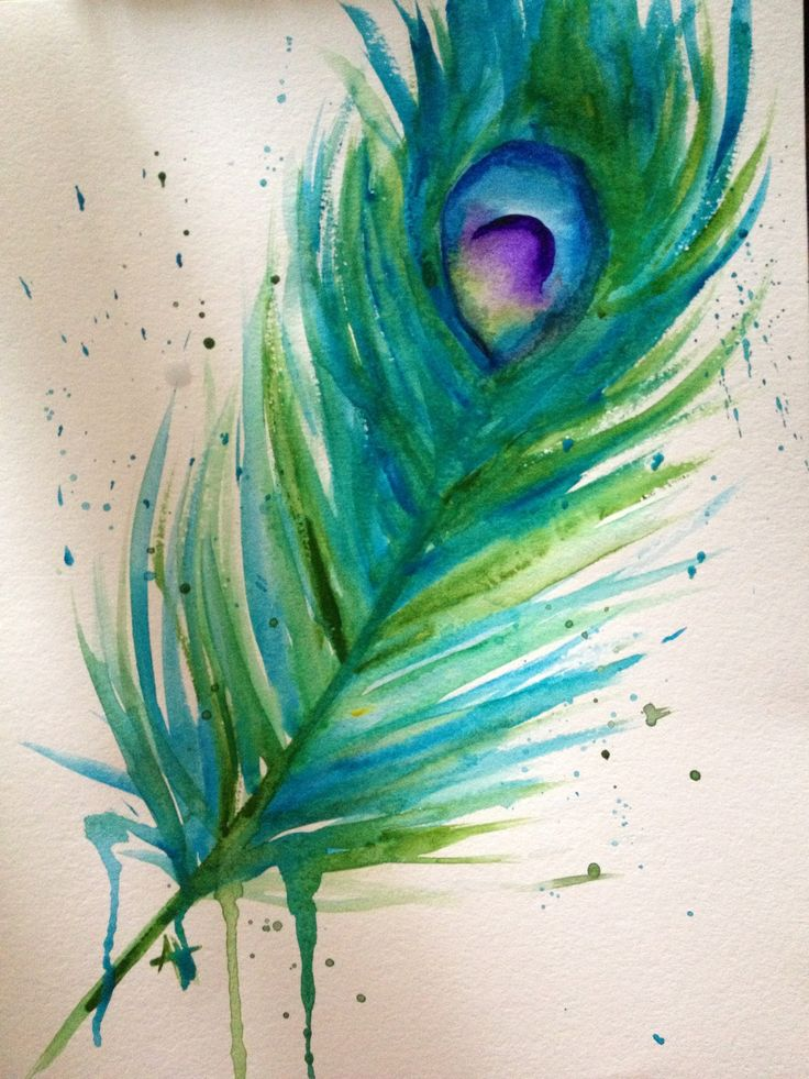 Watercolor peacock feather art