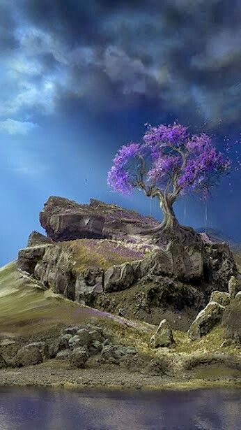 momentary moods  apurple tree on a rock. why I can't live there