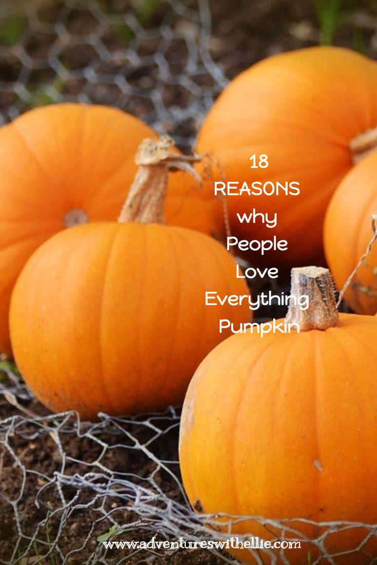18 Reasons Why People Love Pumpkin Everything