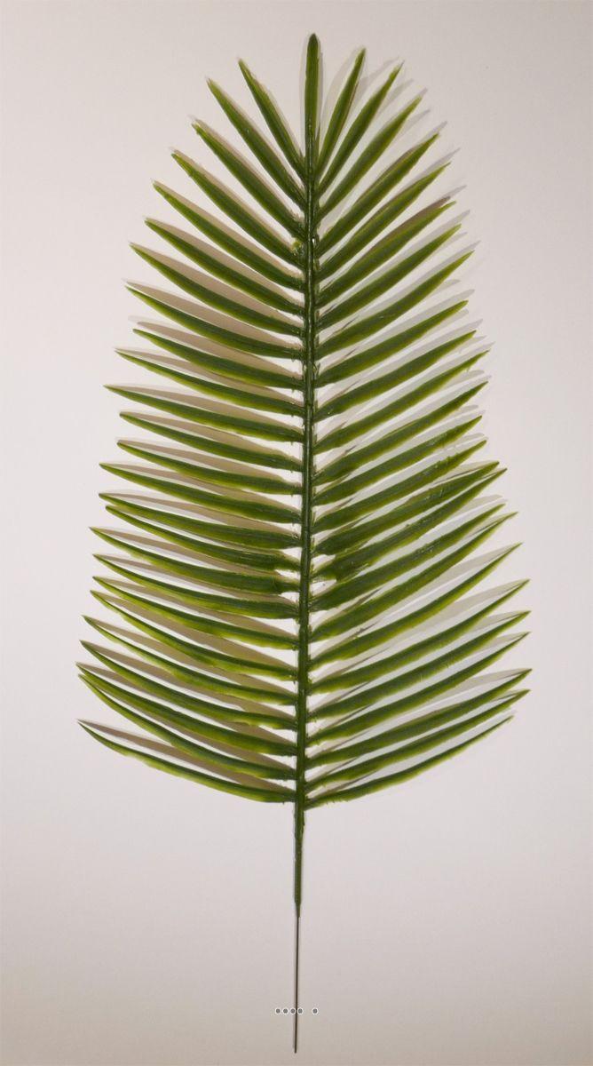 Les 25 meilleures id es concernant palmier phoenix sur for Feuille de palmier deco