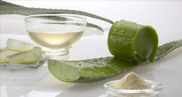 Aloe Vera - treat Eczema, Psoriasis, Skin Allergics...