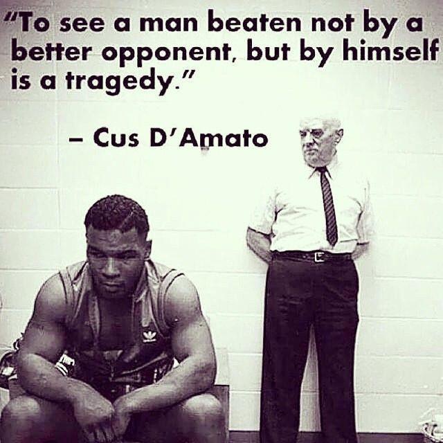25+ Best Warrior Quotes On Pinterest