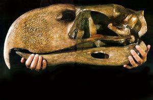 Fossilized Terror Bird Skull  --  Photo courtesy of 'Scientific American' 1994