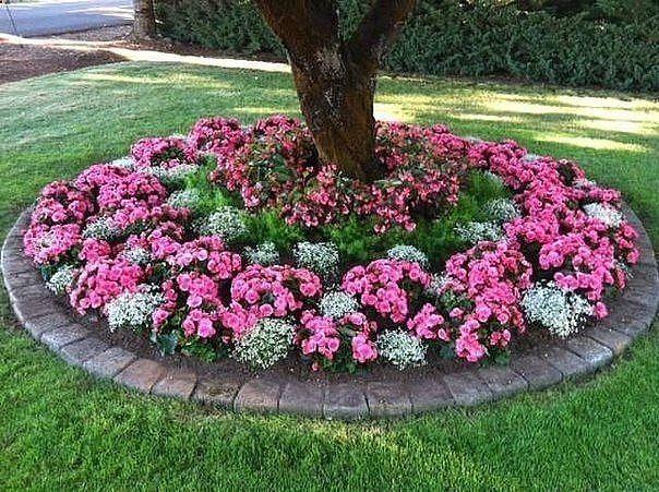 Идеи для цветников / Болталка / Сад и огород