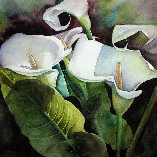 """Calla Lilies I by Susan Adams Giclée of original watercolor ~ 18 x 18"""""""