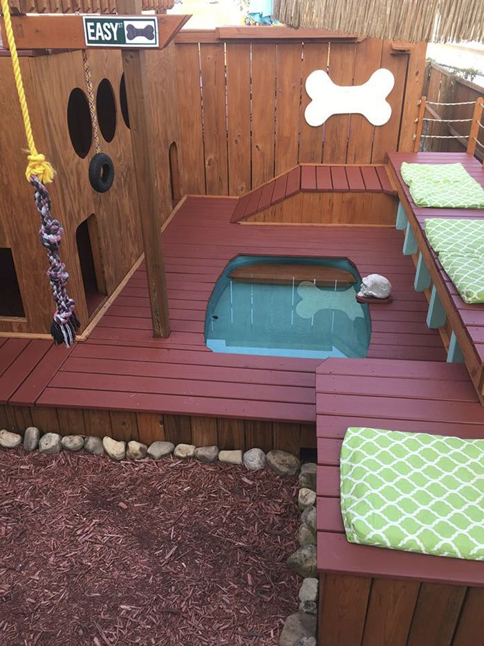 Dog Owner Transforms His Backyard Into A Large Playground With Private Pool For His 4 Dogs | Bored Panda