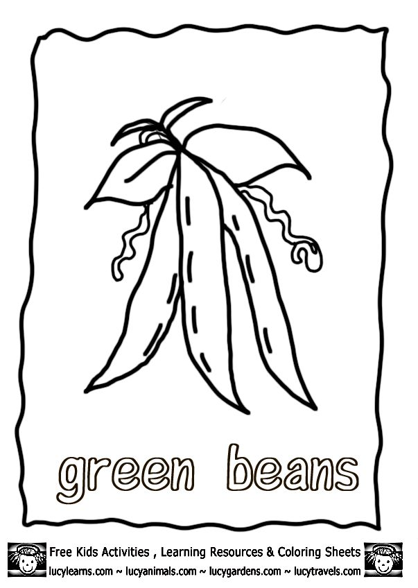 Vegetable Coloring Pages Growing